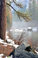 12-9-16 Yosemite Merced River-8109830